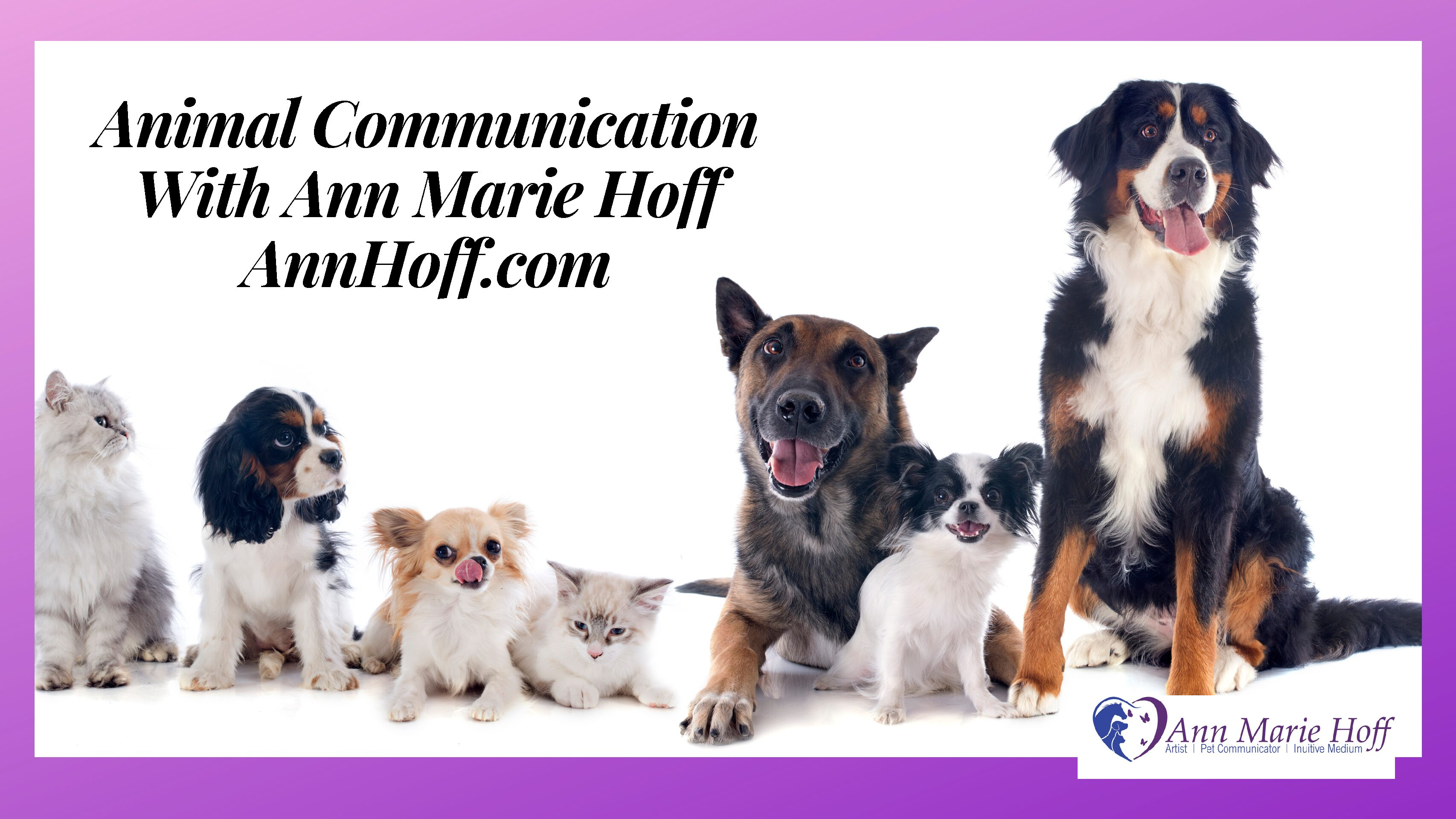 Animal Communication with Ann Marie Hoff